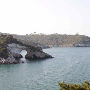 Mazzone Centro Marine